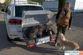 Багажник для животных (аксессуар для фаркопа) 2