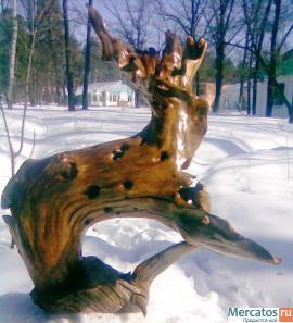Корень дерева 3