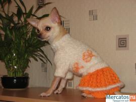 детская карновальная одежда на хеллоуин