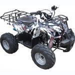 Квадроцикл IRBIS ATV 110 U