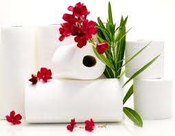 Туалетная бумага, салфетки, бумажные полотенца оптом